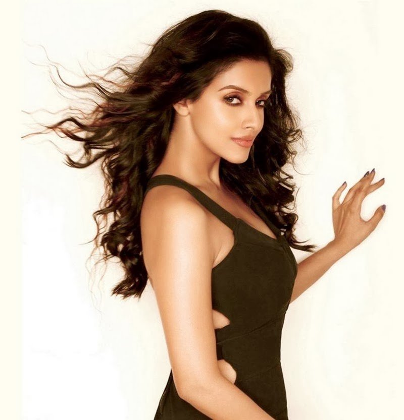 Bollywood actress, Asin, South industry