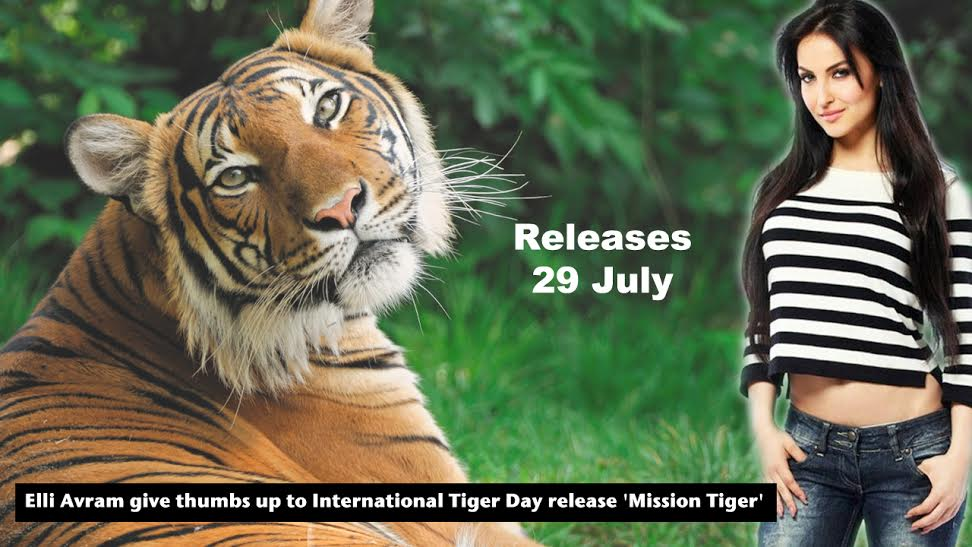 Elli Avram, International Tiger Day, Mission Tiger