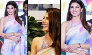 Jacqueline Fernandez, saree, Dabanng tour, press conference, USA, BollywoodDhamaka